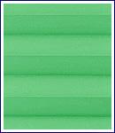 Bild - grün